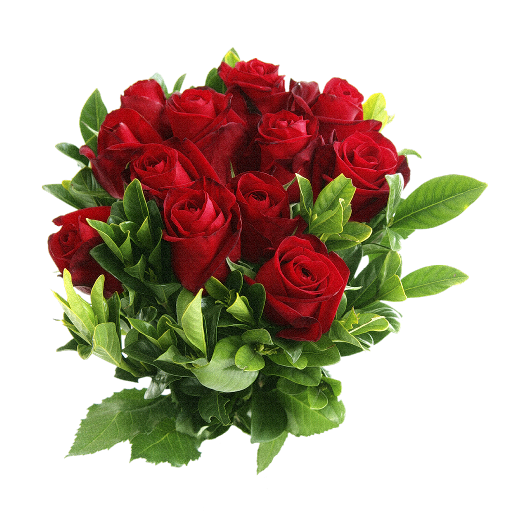 picture royalty free download Red Rose PNG Image