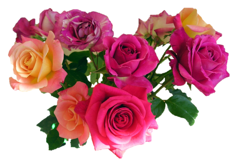 clipart library bouquet mixed roses by wasshere on DeviantArt