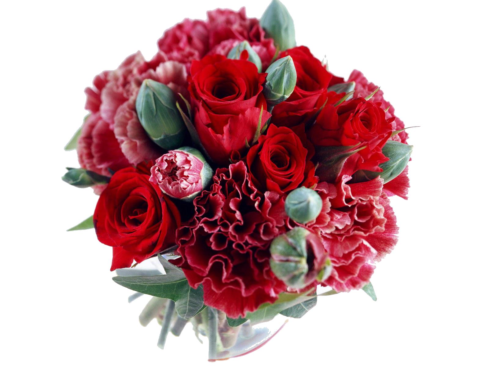 graphic free Bouquet transparent wedding flower. Rose bride