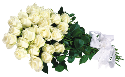 image library stock White Roses Transparent Bouquet Clipart
