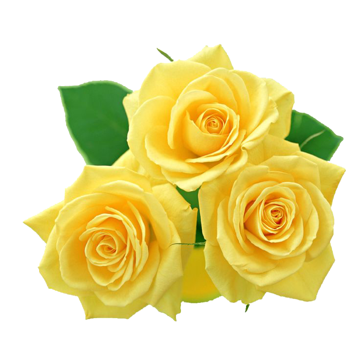 image transparent Yellow Flowers Bouquet PNG File