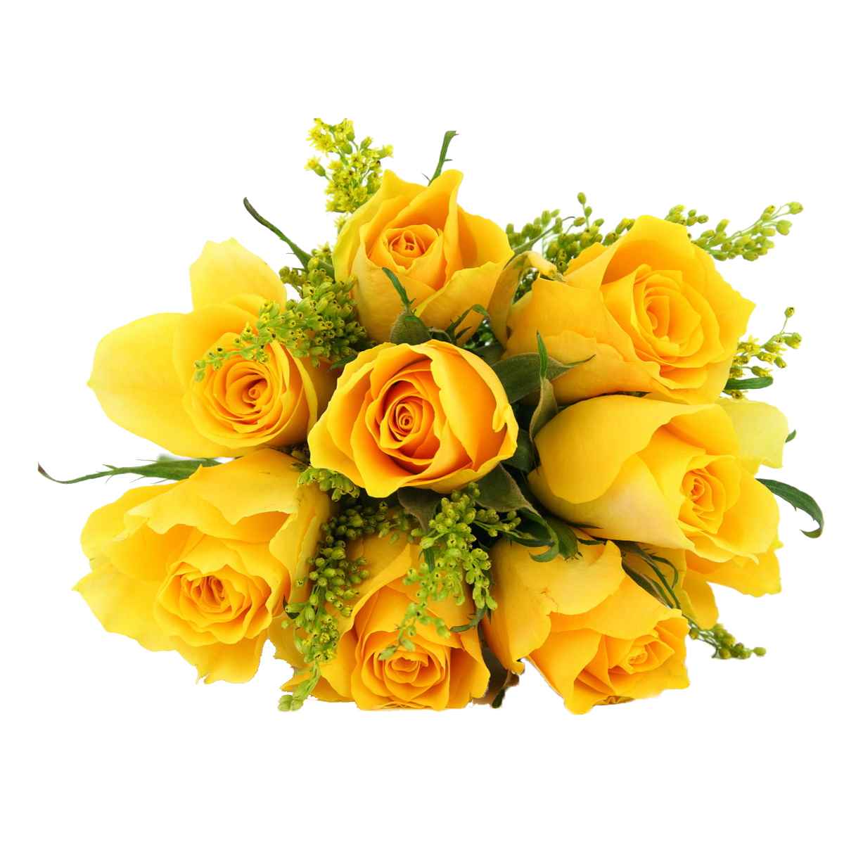 image royalty free library Dozen Yellow Roses Bouquet