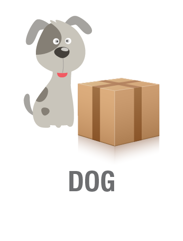 picture library Pencil and in color. Box clipart dog