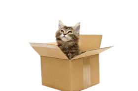 clip black and white library Boxes clipart cat. Png free images toppng