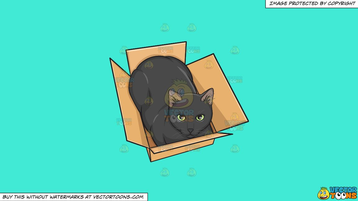 clipart A black in box. Boxes clipart cat