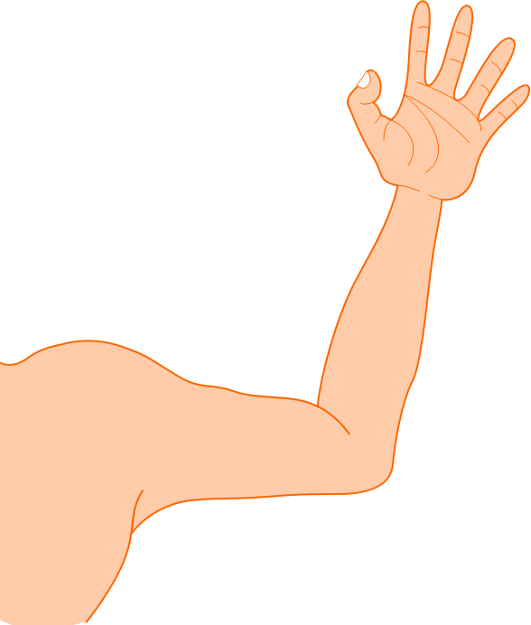 picture Bra clipart 2 arm. Left free for download
