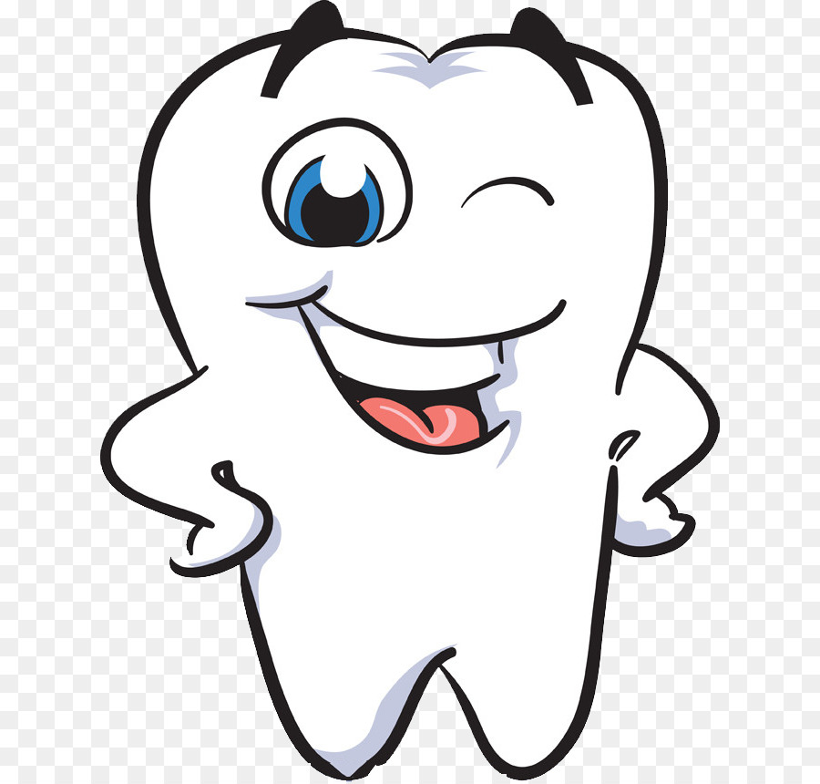 free Braces clipart human tooth. Transparent .