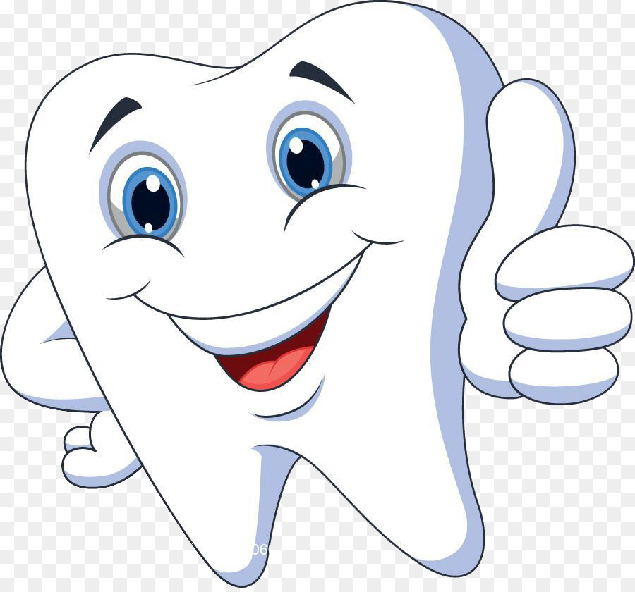vector royalty free stock Webstockreview . Braces clipart human tooth.