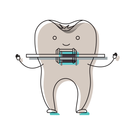 clip transparent Cartoon with root and. Braces clipart human tooth.