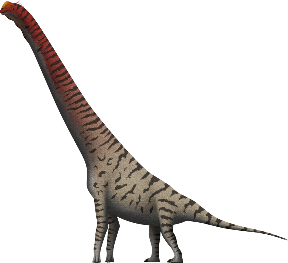 picture stock Giraffatitan brancai by SpinoInWonderland on DeviantArt