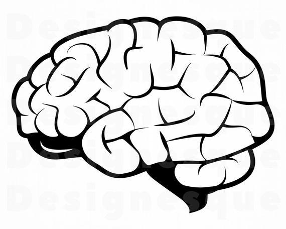 clip art transparent library Brain clipart. Svg files for cricut