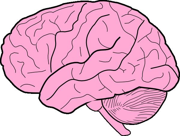 clip art black and white library Brain clipart. Cartoon