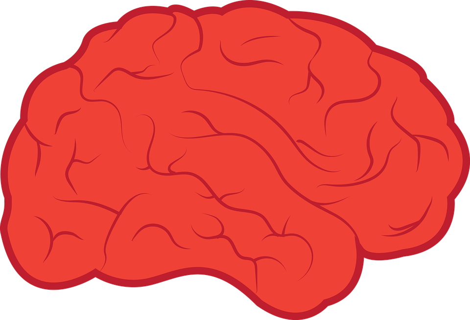 banner library stock Brain clipart. Neurology free on dumielauxepices