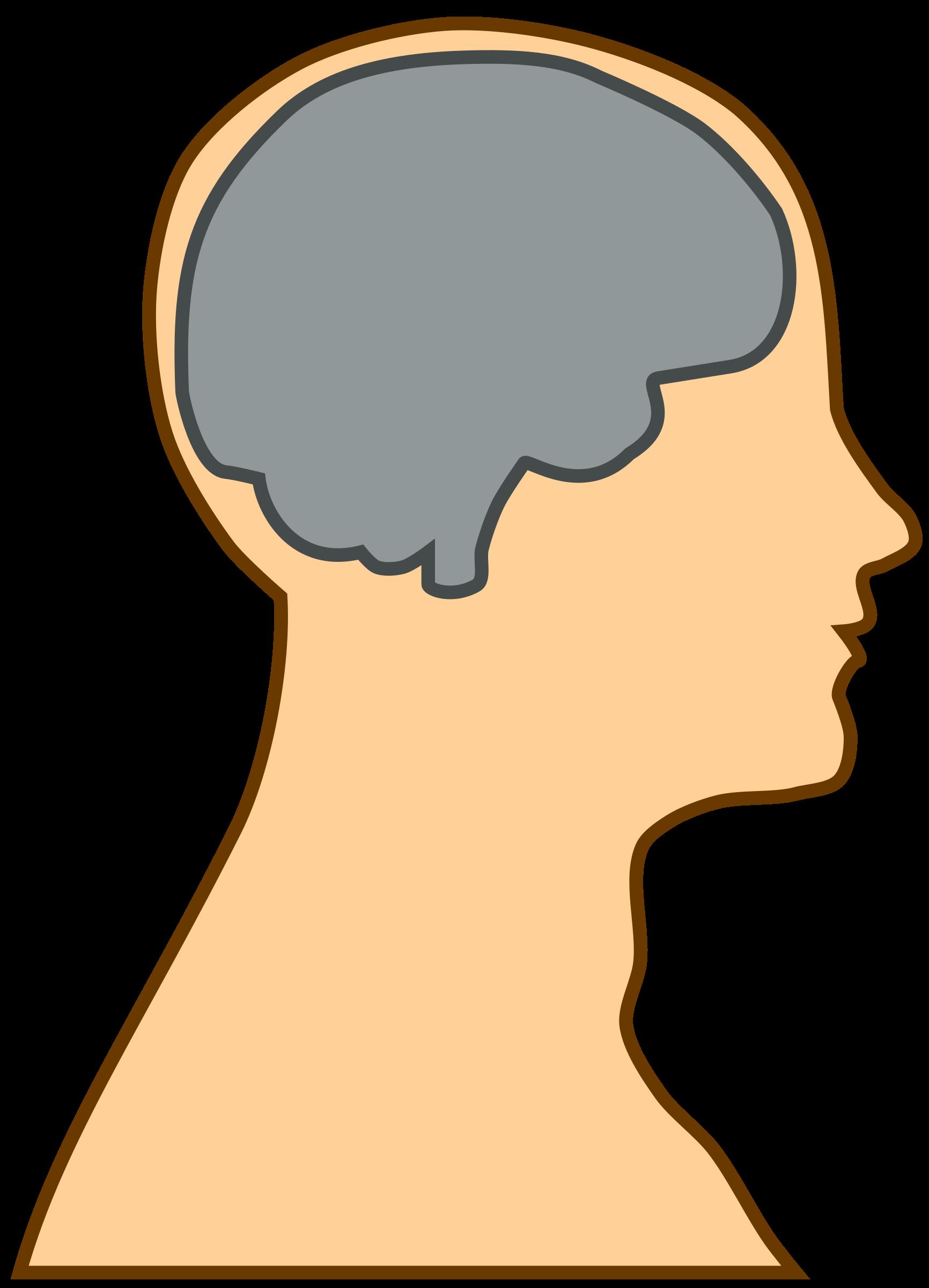 jpg free download Silhouette at getdrawings com. Brain clipart human brain