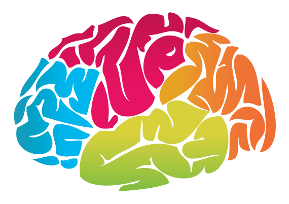 graphic library Brain Colour Drawing transparent PNG