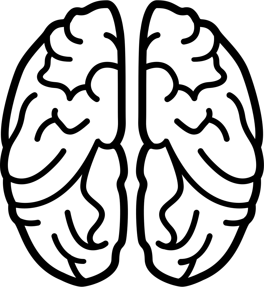 jpg transparent Brain Svg Png Icon Free Download