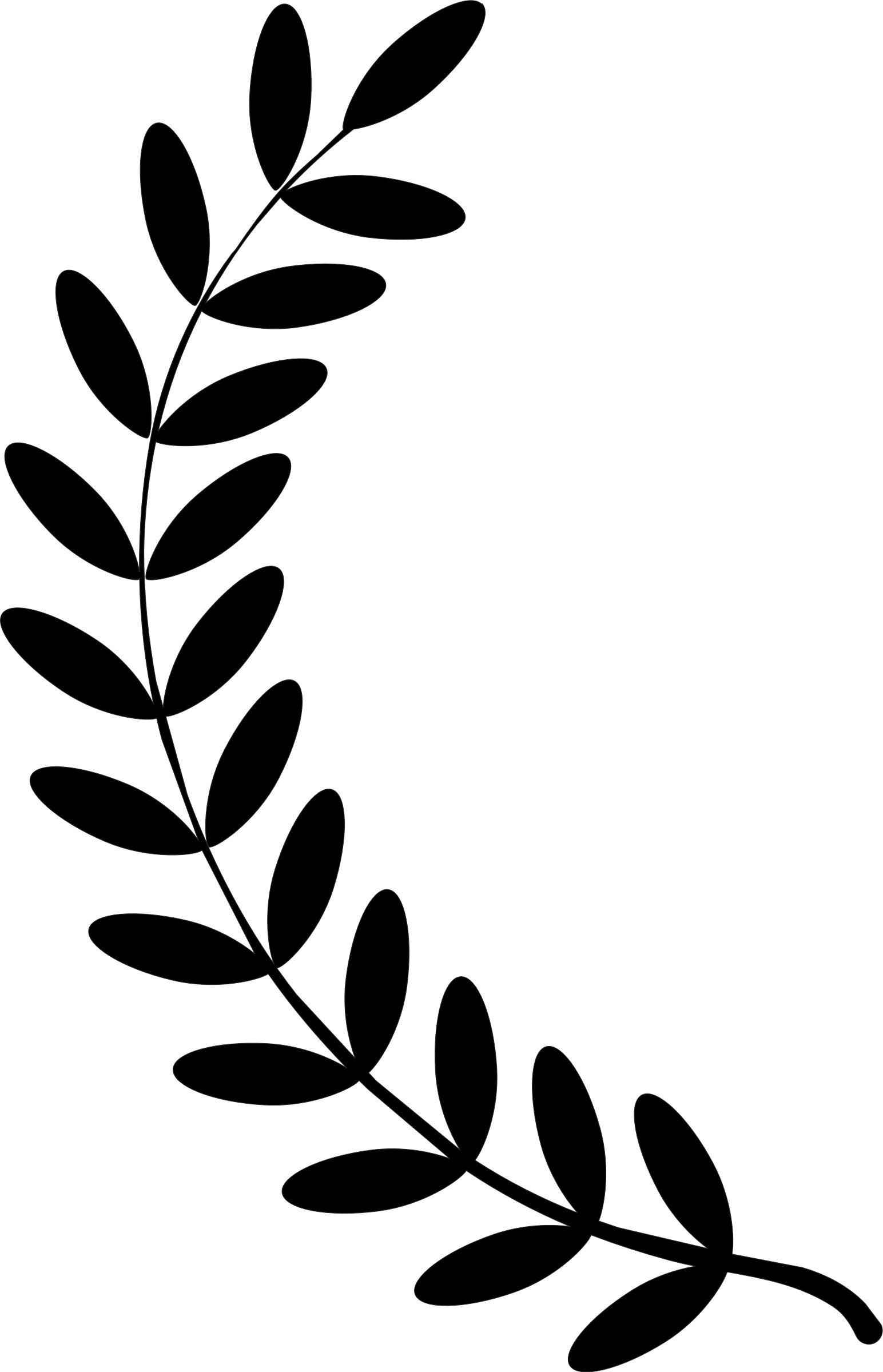 banner free download Floral wreath clipart black and white. Laurel single twig clip