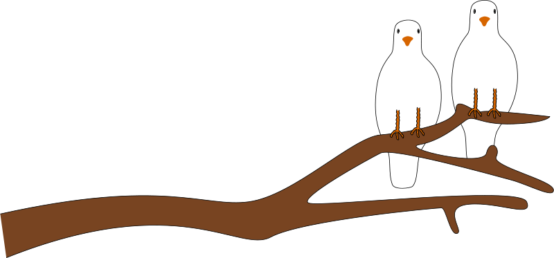 jpg free library Panda free images. Branch clipart.