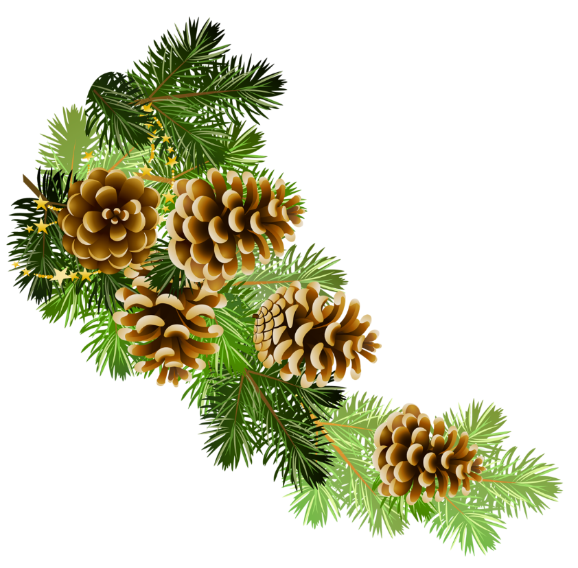 image freeuse stock Pinecone clipart black and white. Pine cones branch border