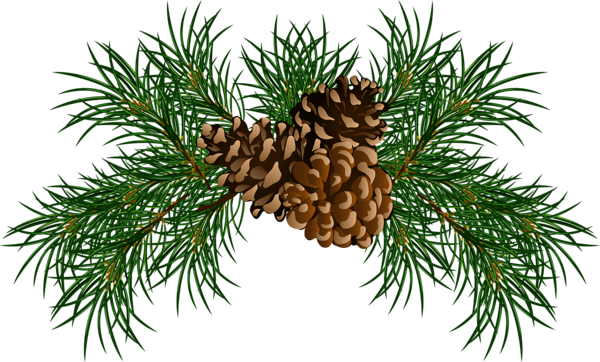 image freeuse stock Http favata rssing com. Branch clipart bough