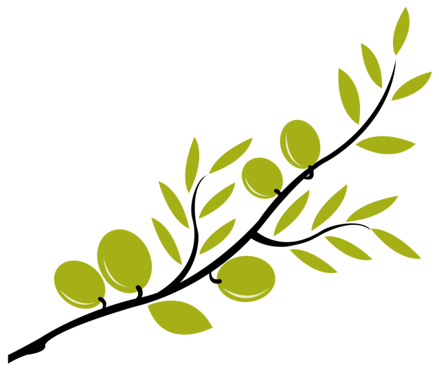stock Branch clipart tree wallpaper. Olive image group cliparts