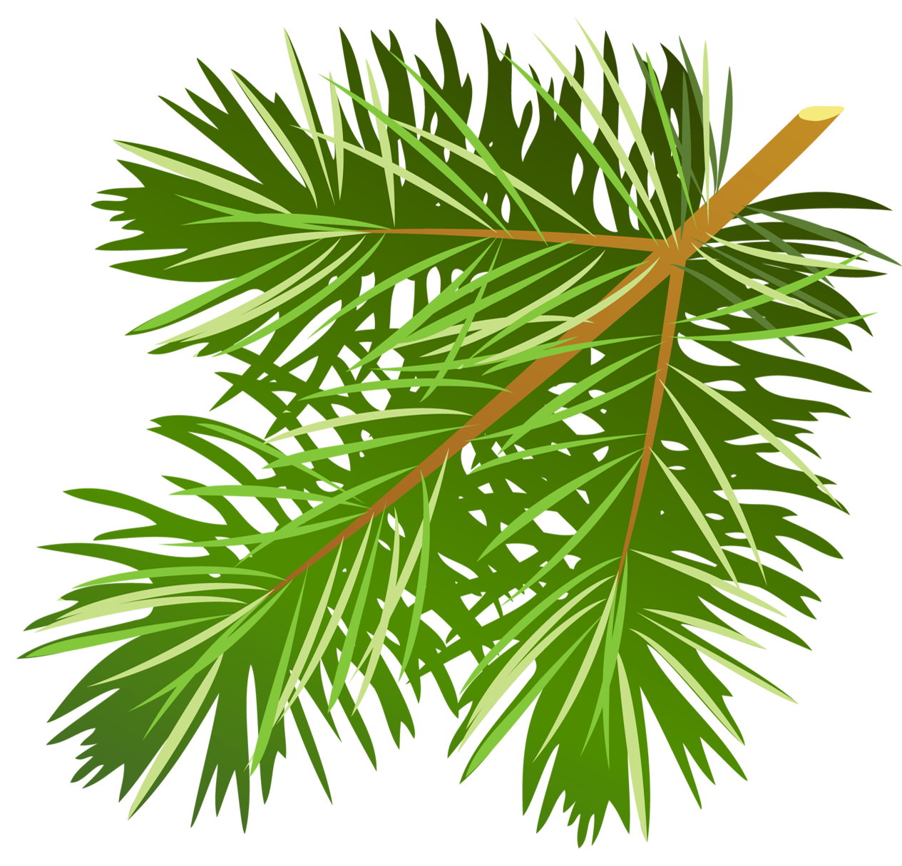 clip art stock Pine tree free on. Branch clipart woodland branch