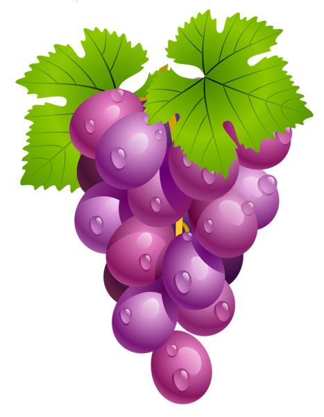 clip royalty free Bread clipart grape. Http favata rssing com