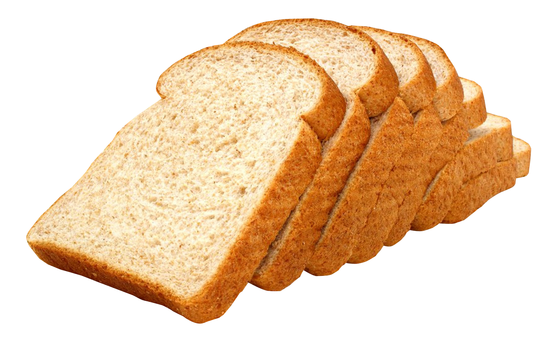 transparent download  clipart conchas for. Transparent bread toasted