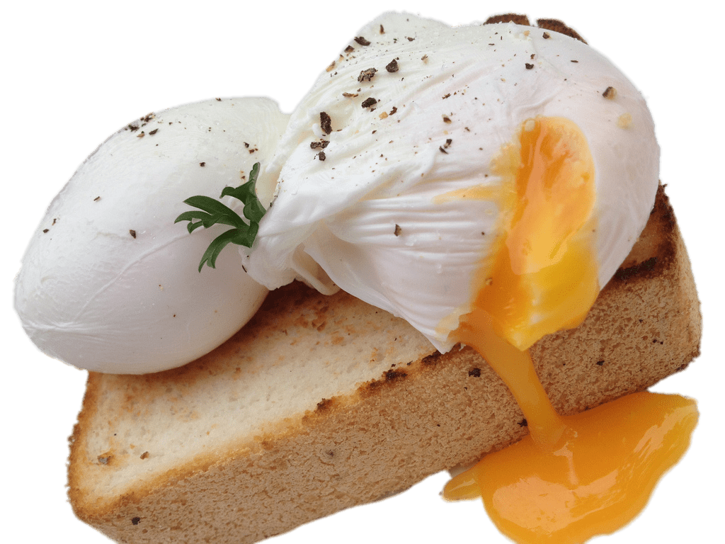 graphic library stock Poached Eggs on Toast transparent PNG