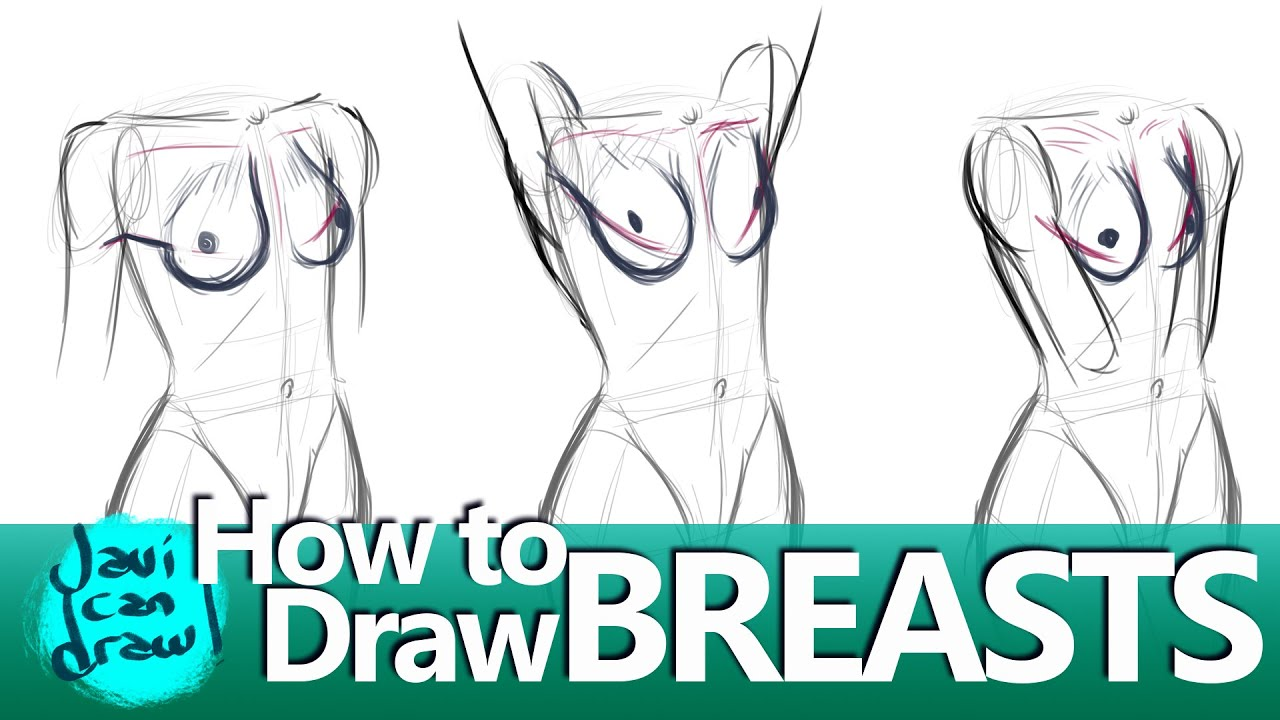vector How to draw . Breasts drawing
