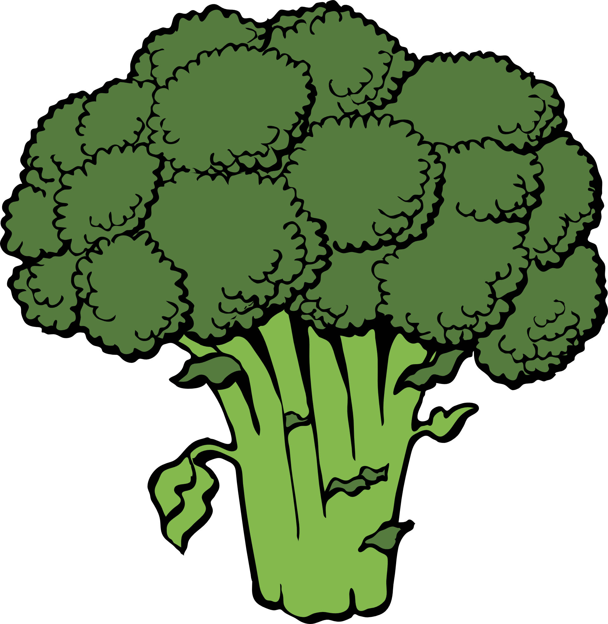 free library Broccoli clipart. Black and white free
