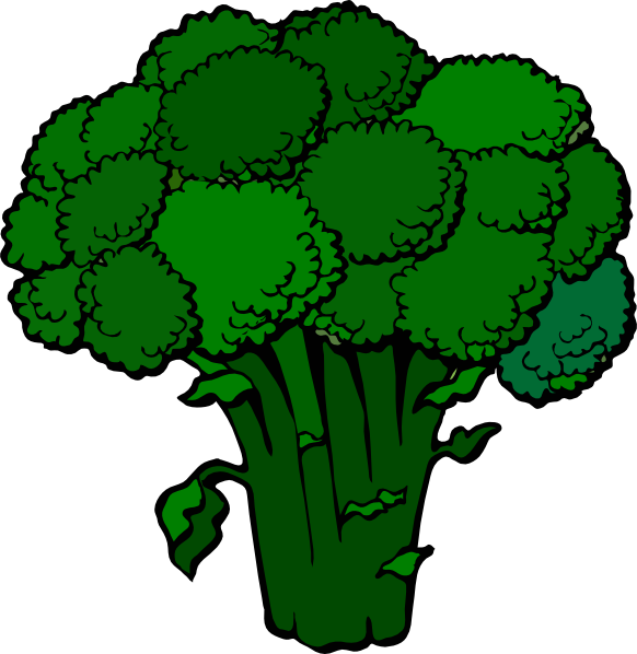 png free . Broccoli clipart