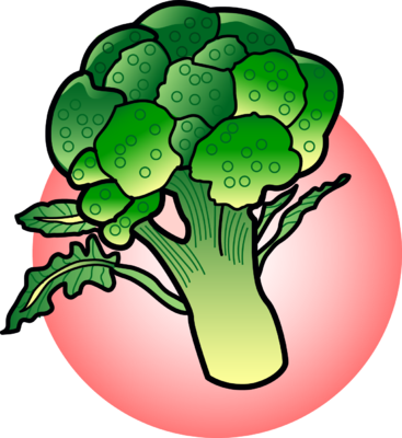 vector free download Broccoli clipart. Image food clip art