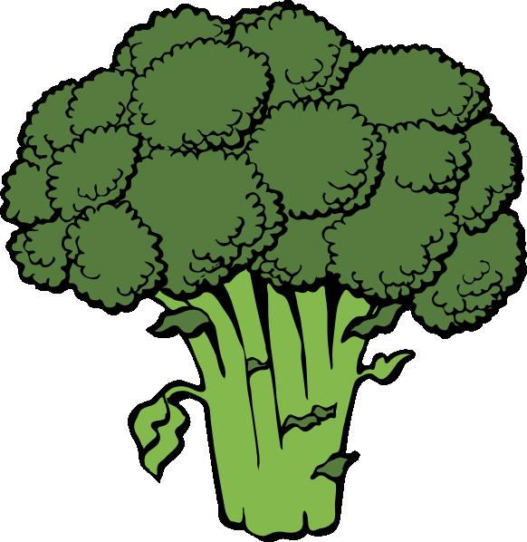 stock Broccoli Clip Art at Clker