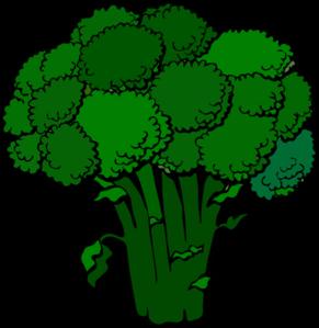 png transparent download Dark Broccoli Clip Art at Clker