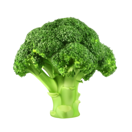 banner freeuse Buy seeds online description. Broccoli clipart cabbage chinese
