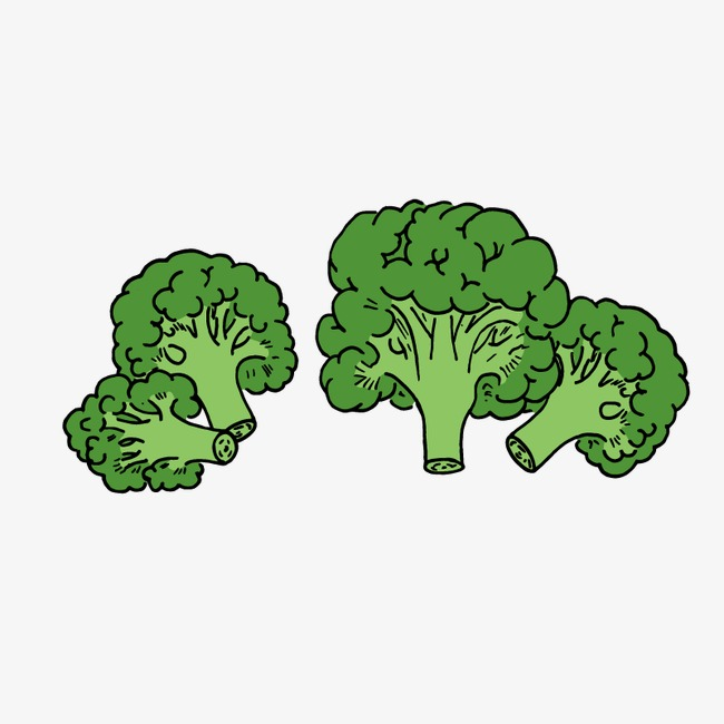 svg library Broccoli clipart cartoon. Hand painted png handpainted.
