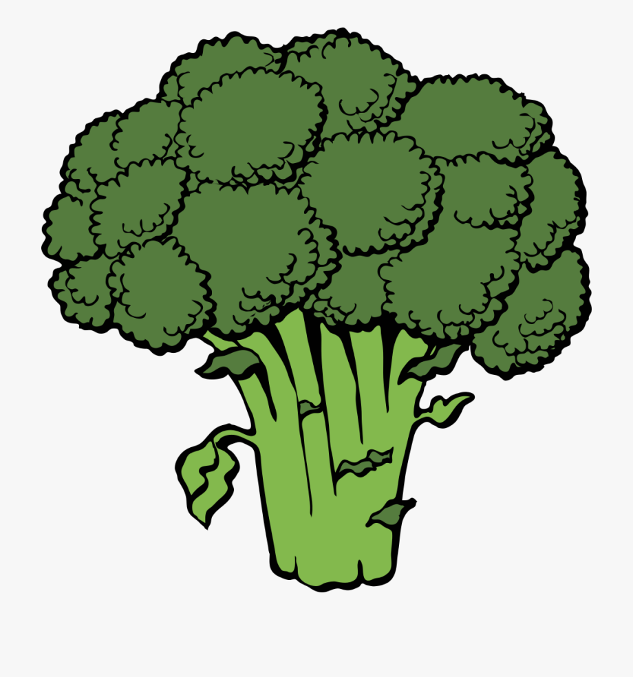 jpg library library Cabbage bok choy free. Broccoli clipart cartoon.