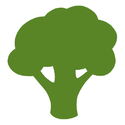 svg transparent library Broccoli clipart coloring book. Nice pages for kids