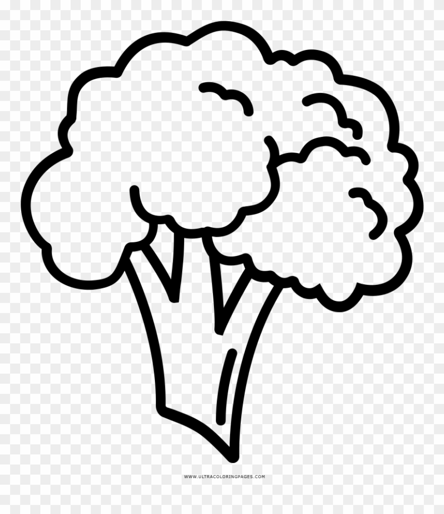 image library download Coloring page easy to. Broccoli clipart draw.