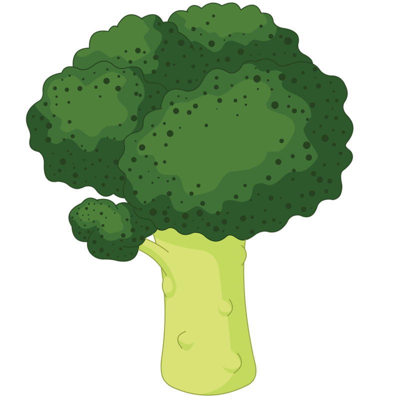 picture freeuse download Broccoli Royalty