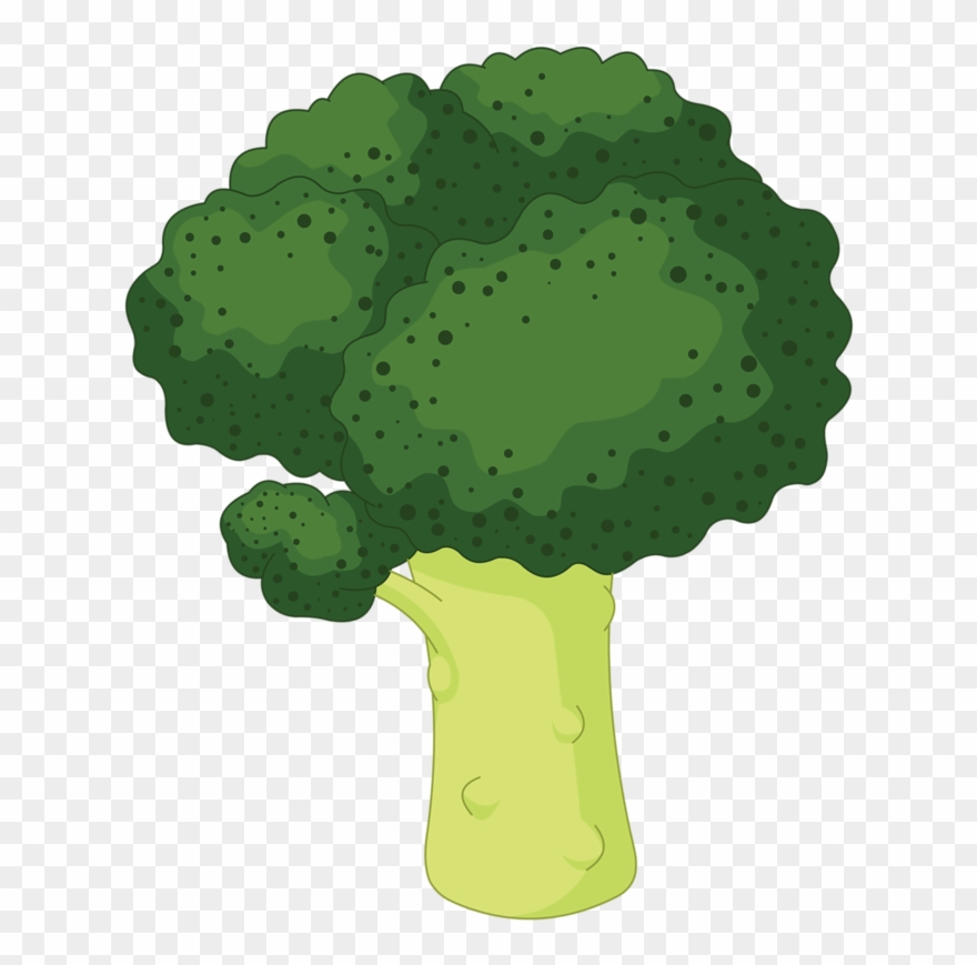 banner freeuse library Broccoli clipart lettuce. Color verde en caricatura.