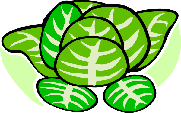 freeuse stock Cabbage clipart animated. Panda free images cabbageclipart.
