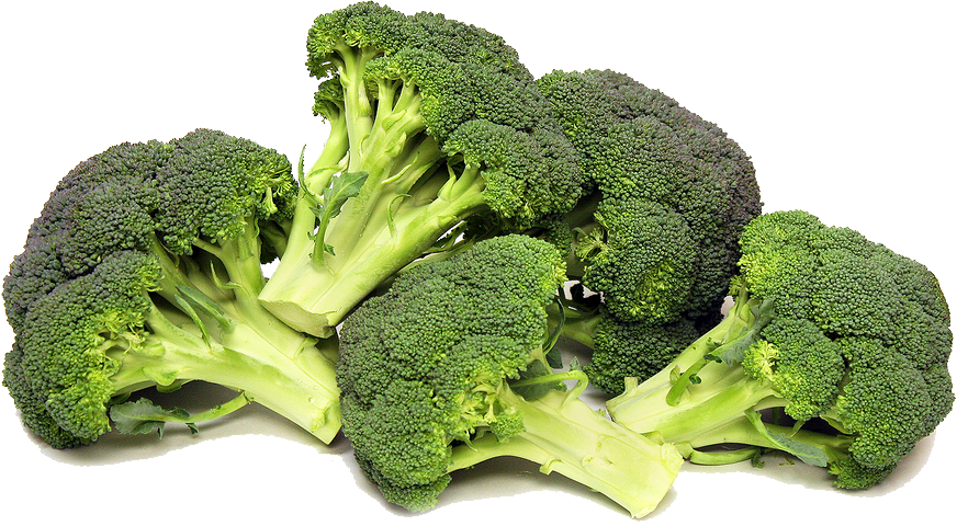 jpg freeuse Broccoli clipart strong. Png transparent images all