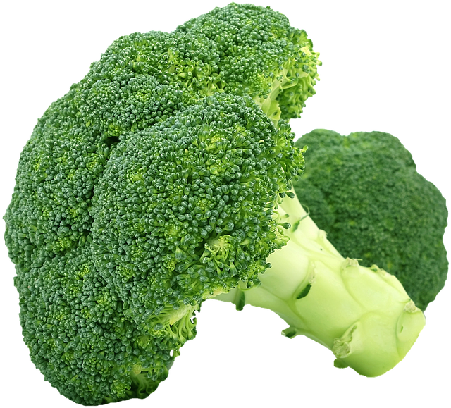 jpg free stock  annoying things vegans. Broccoli clipart strong