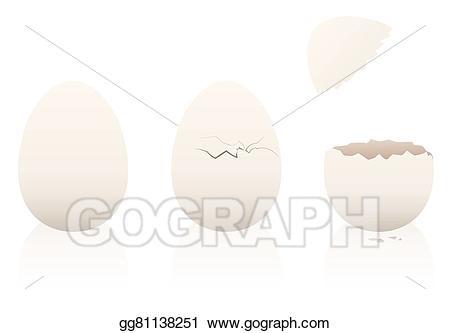 graphic stock Vector illustration eggs open. Broken clipart intact