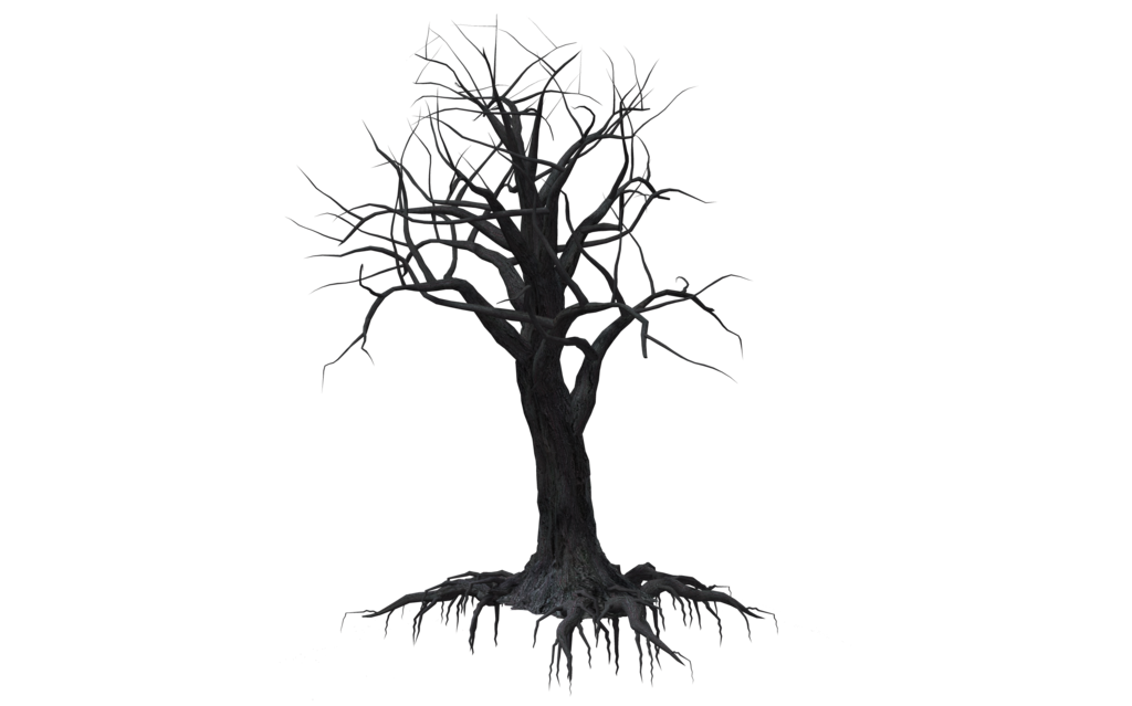 picture free stock Creepy Tree Drawing at GetDrawings