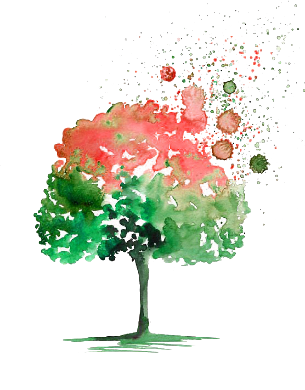 svg transparent library Painting tree picture material. Cheesecake drawing watercolor