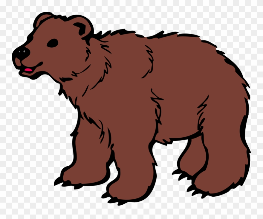 graphic library Brown bear clipart. Png download