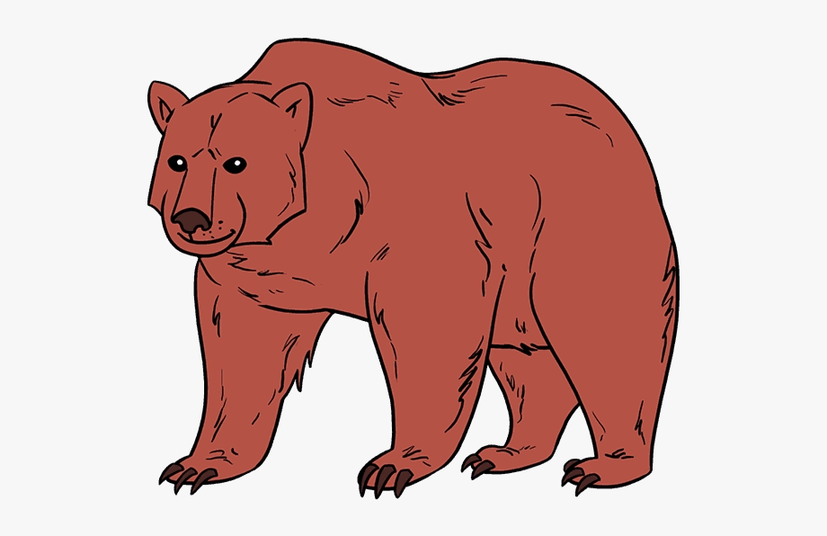graphic Brown bear clipart. Sun realistic draw a